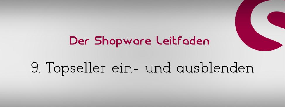 9-shopware-topseller-ein-ausblenden
